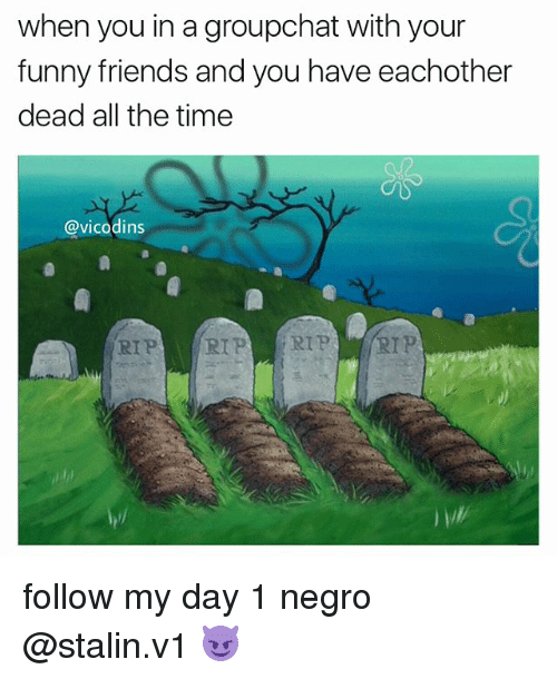 Stalinator: when you in agroupchat with your  funny friends and you have eachother  dead all the time  @vicodins  RIP  RIP RIP RIP follow my day 1 negro @stalin.v1 😈