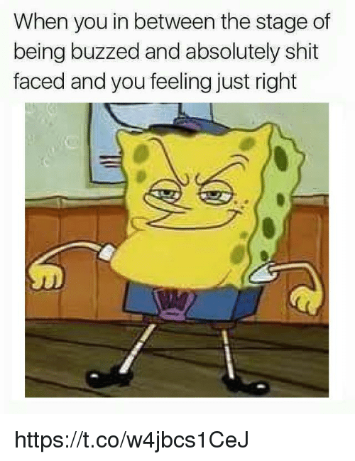 Just Right: When you in between the stage of  being buzzed and absolutely shit  faced and you feeling just right https://t.co/w4jbcs1CeJ