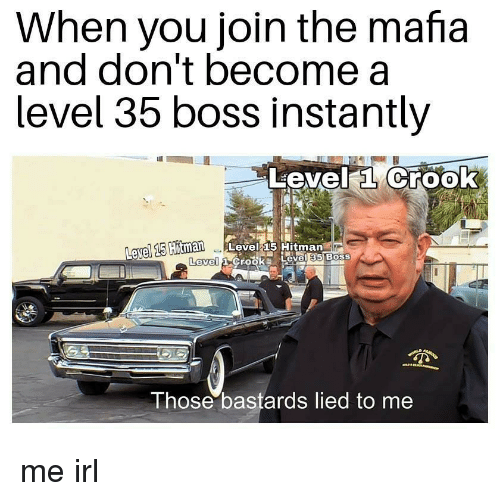Irl, Me IRL, and Hitman: When you join the mafia  and don't become a  level 35 boss Instantly  Level a Crook  avel 15  Hitman Level 15 Hitman  Level  Those bastards lied to me me irl
