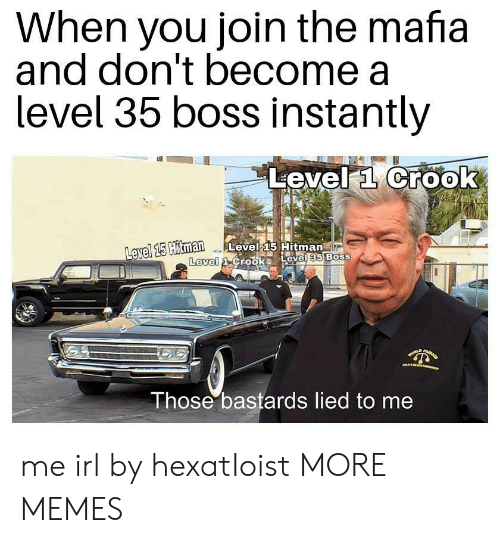 Dank, Memes, and Target: When you join the mafia  and don't become a  level 35 boss Instantly  Level a Crook  avel 15  Hitman Level 15 Hitman  Level  Those bastards lied to me me irl by hexatIoist MORE MEMES