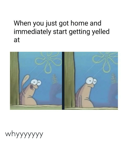 getting yelled at: When you just got home and  immediately start getting yelled  at whyyyyyyy