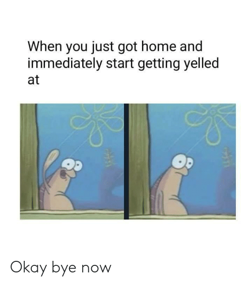 okay bye: When you just got home and  immediately start getting yelled  at Okay bye now