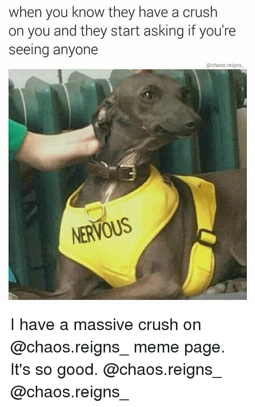 Anyoning: when you know they have a crush  on you and they start asking if you're  seeing anyone  @chaos reigns  NERVOUS I have a massive crush on @chaos.reigns_ meme page. It's so good. @chaos.reigns_ @chaos.reigns_