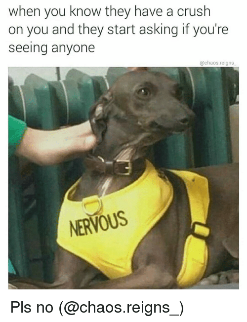 Anyoning: when you know they have a crush  on you and they start asking if you're  Seeing anyone  @chaos reigns  NERVOUS Pls no (@chaos.reigns_)