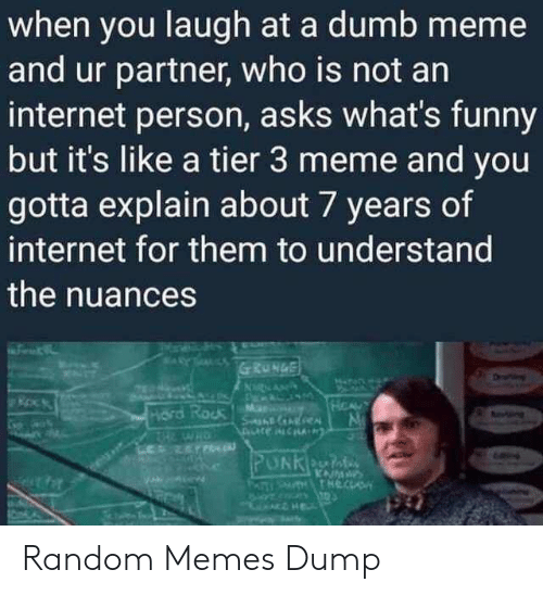 Dumb, Funny, and Internet: when you laugh at a dumb meme  and ur partner, who is not an  internet person, asks what's funny  but it's like a tier 3 meme and you  gotta explain about 7 years of  internet for them to understand  the nuances Random Memes Dump