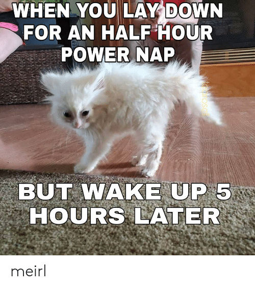 Lay Down: WHEN YOU LAY DOWN  FOR AN HALF HOUR  POWER NAP  BUT WAKE UP 5  HOURS LATER  osal meirl