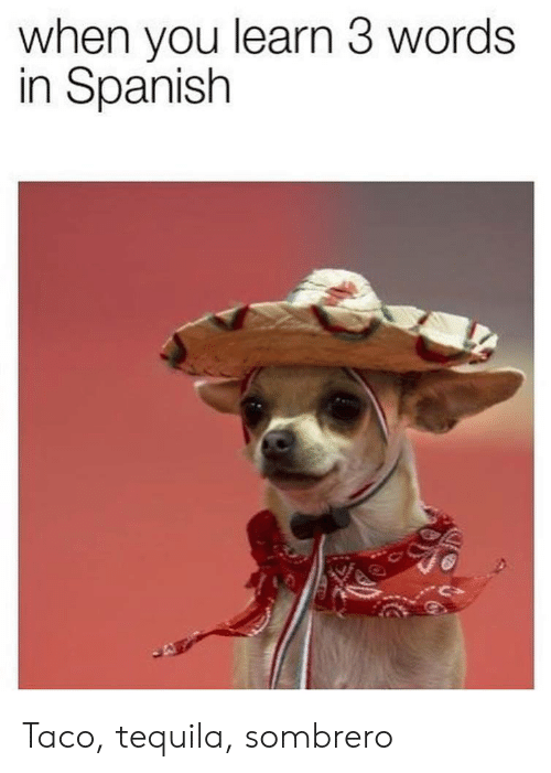 3 Words: when you learn 3 words  in Spanish Taco, tequila, sombrero