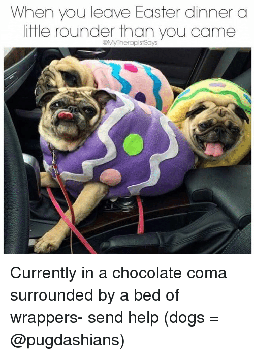 Helping Dog: When you leave Easter dinner a  little rounder than you came  @My Therapist Says Currently in a chocolate coma surrounded by a bed of wrappers- send help (dogs = @pugdashians)