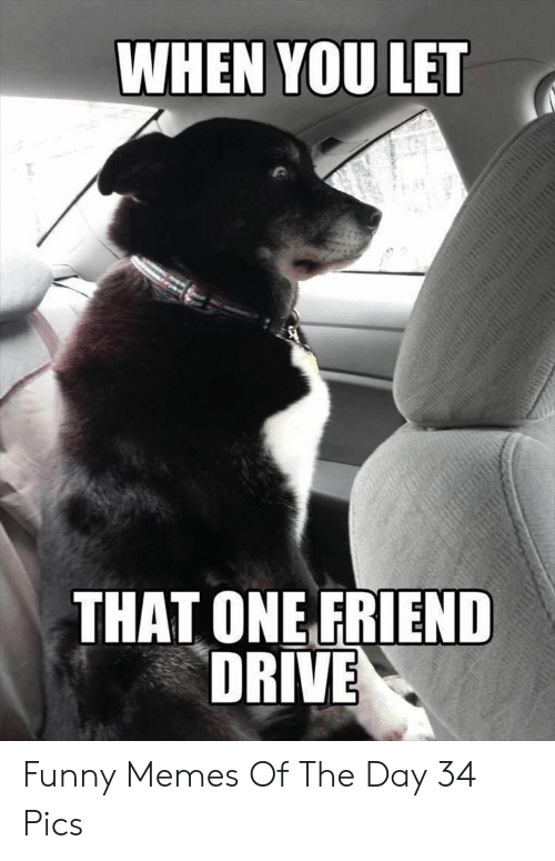 Funny, Memes, and Drive: WHEN YOU LET  THAT ONE FRIEND  DRIVE Funny Memes Of The Day 34 Pics