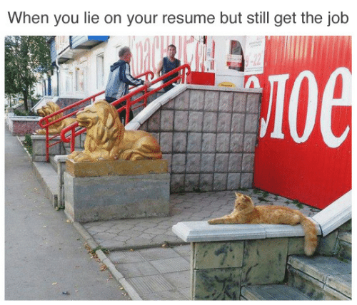 Resume, Job, and You: When you lie on your resume but still get the job