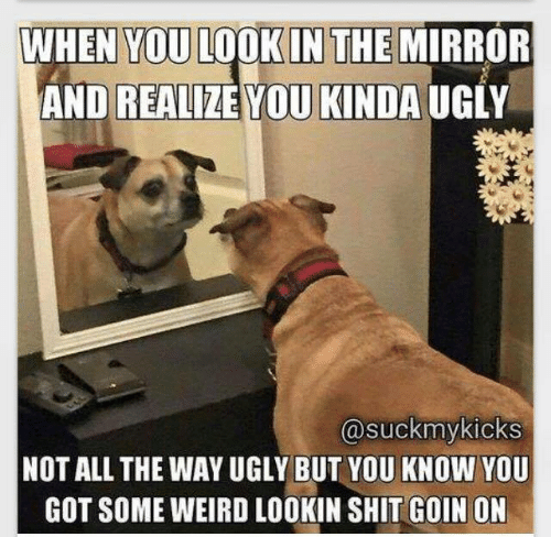 Look In The Mirror: WHEN YOU LOOK IN THE MIRROR  AND REALIZE YOU KINDA UGLY  @suckmykicks  NOT ALL THE WAY UGLY BUT YOU KNOW YOU  GOT SOME WEIRD LOOKIN SHIT GOIN ON