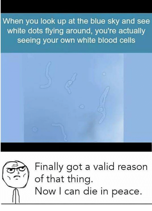 Bloods, Memes, and Blue: When you look up at the blue sky and see  white dots flying around, you're actually  seeing your own white blood cells  Finally got a valid reason  of that thing.  Now I can die in peace.