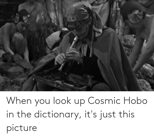 hobo: When you look up Cosmic Hobo in the dictionary, it's just this picture