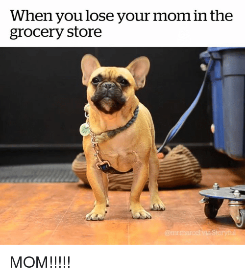 Mom, You, and Store: When you lose your mom in the  grocery store MOM!!!!!