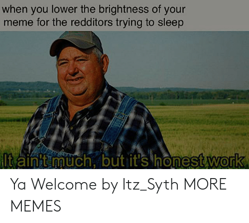 Redditors: when you lower the brightness of your  meme for the redditors trying to sleep  ltain t much, but it's honest work Ya Welcome by Itz_Syth MORE MEMES