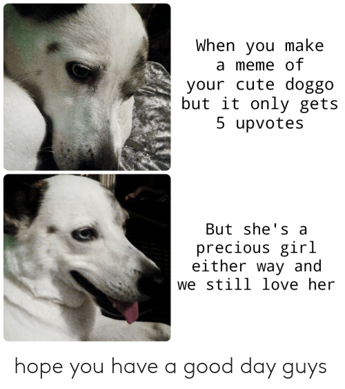 still love: When you make  a meme of  your cute doggo  but it only gets  5 upvotes  But she's a  precious girl  either way and  we still love her hope you have a good day guys