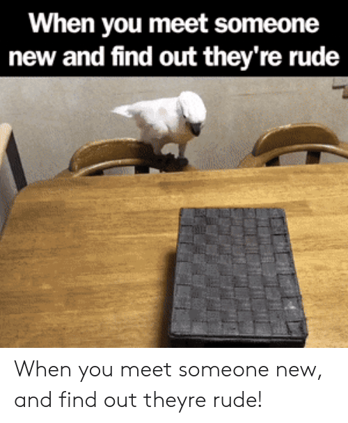 When You Meet Someone: When you meet someone  new and find out they're rude When you meet someone new, and find out theyre rude!