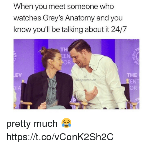 When You Meet Someone: When you meet someone who  watches Grey's Anatomy and you  know you'll be talking about it 24/7  TH  EN  OR  THE  EN  OR  EY  IG  Okepnershunt pretty much 😂 https://t.co/vConK2Sh2C