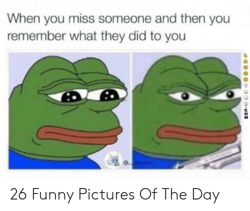 Miss Someone: When you miss someone and then you  remember what they did to you  dapogp auo 26 Funny Pictures Of The Day