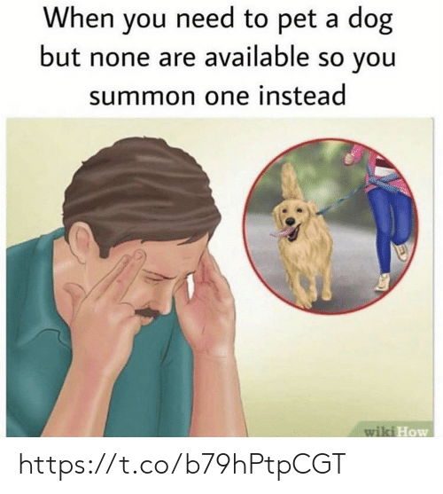 Memes, Wiki, and 🤖: When you need to pet a dog  but none are available so you  summon one instead  wiki How https://t.co/b79hPtpCGT