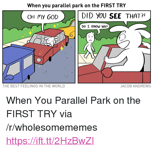 """Do I Know You: When you parallel park on the FIRST TRY  >.  DID YOU SEE THAT?  OH my GOD  DO I KNOW yoU?  THE BEST FEELINGS IN THE WORLD  JACOB ANDREWS <p>When You Parallel Park on the FIRST TRY via /r/wholesomememes <a href=""""https://ift.tt/2HzBwZI"""">https://ift.tt/2HzBwZI</a></p>"""