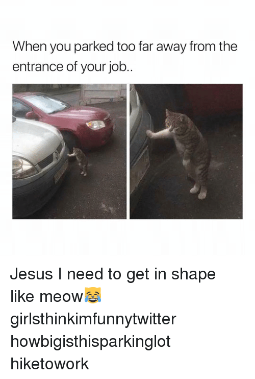 Funny, Jesus, and Job: When you parked too far away from the  entrance of your job. Jesus I need to get in shape like meow😹 girlsthinkimfunnytwitter howbigisthisparkinglot hiketowork