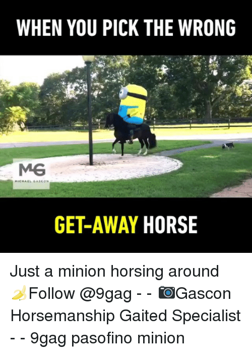 a minion: WHEN YOU PICK THE WRONG  GET-AWAY HORSE Just a minion horsing around 🍌Follow @9gag - - 📷Gascon Horsemanship Gaited Specialist - - 9gag pasofino minion