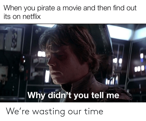 Netflix, Movie, and Time: When you pirate a movie and then find out  its on netflix  Why didn't you tell me We're wasting our time