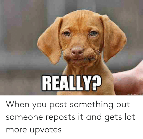 Upvotes: When you post something but someone reposts it and gets lot more upvotes