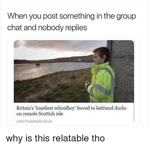 telegraph.co.uk: When you post something in the group  chat and nobody replies  Britain's loneliest schoolboy' forced to befriend ducks  on remote Scottish isle  WWW.TELEGRAPH CO UK why is this relatable tho