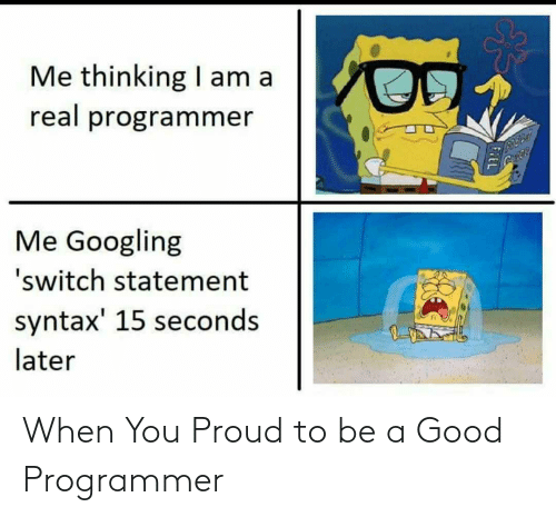 programmer: When You Proud to be a Good Programmer