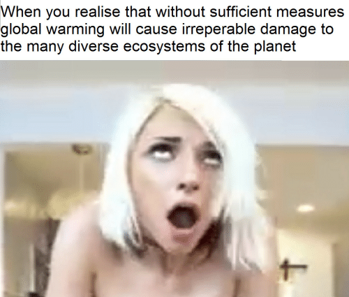 Globalism: When you realise that without sufficient measures  global warming will cause irreperable damage to  the many diverse ecosystems of the planet
