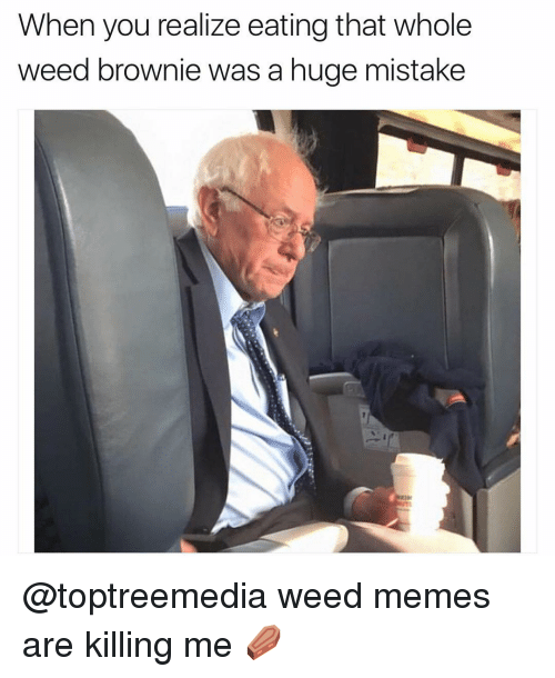 weed meme: When you realize eating that whole  weed brownie was a huge mistake @toptreemedia weed memes are killing me ⚰️