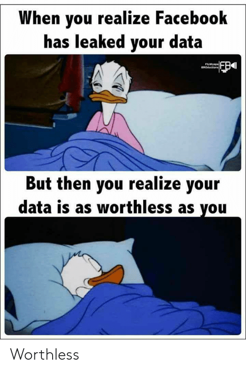 Facebook, Data, and You: When you realize Facebook  has leaked your data  FILMiyapa  BROductions  But then you realize your  data is as worthless as you Worthless
