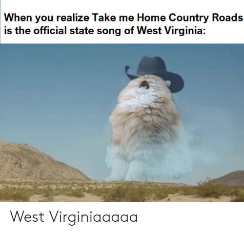 Home, Take Me Home, and Virginia: When you realize Take me Home Country Roads  is the official state song of West Virginia: West Virginiaaaaa