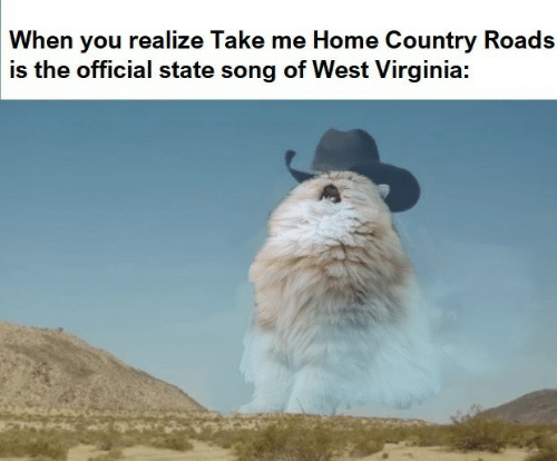 Country Roads: When you realize Take me Home Country Roads  is the official state song of West Virginia: