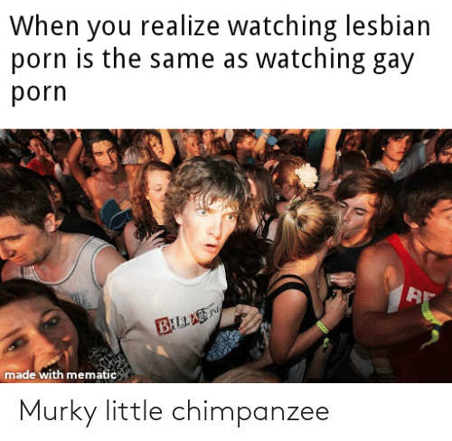 Gay Porn, Lesbian, and Porn: When you realize watching lesbian  porn is the same as watching gay  porn  BILLA  made with mematic Murky little chimpanzee