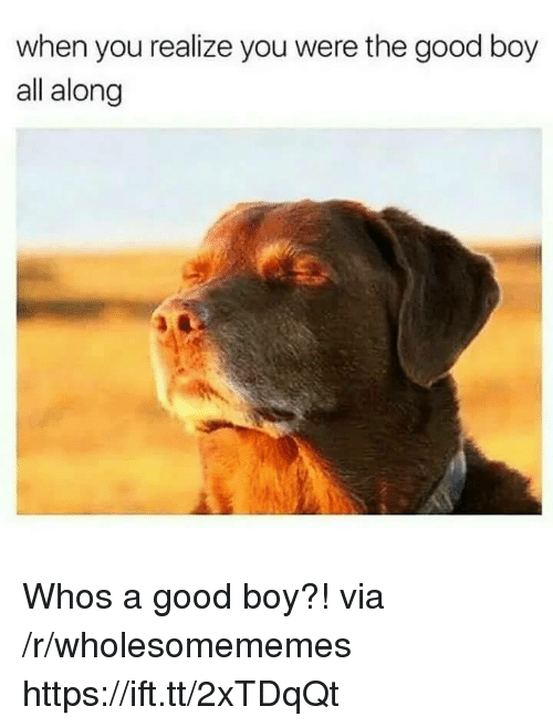 Good, Boy, and Who: when you realize you were the good boy  all along Whos a good boy?! via /r/wholesomememes https://ift.tt/2xTDqQt
