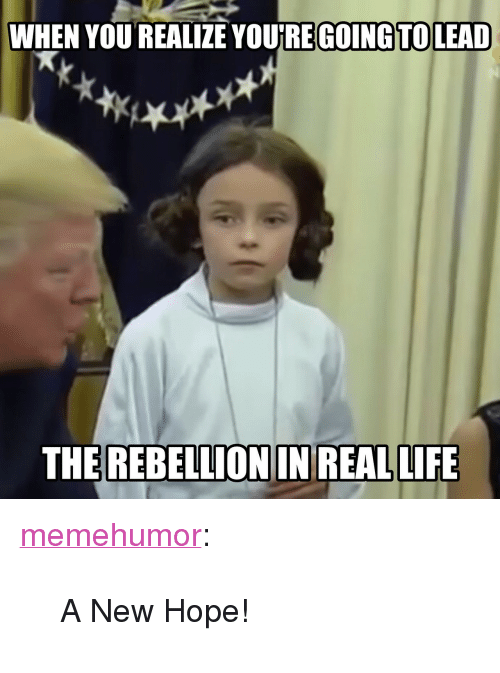 "A New Hope: WHEN YOU REALIZE YOURE GOING TOLEAD  THE REBELLION IN REAL LIFE <p><a href=""http://memehumor.net/post/166909644302/a-new-hope"" class=""tumblr_blog"">memehumor</a>:</p>  <blockquote><p>A New Hope!</p></blockquote>"