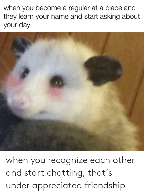 recognize: when you recognize each other and start chatting, that's under appreciated friendship