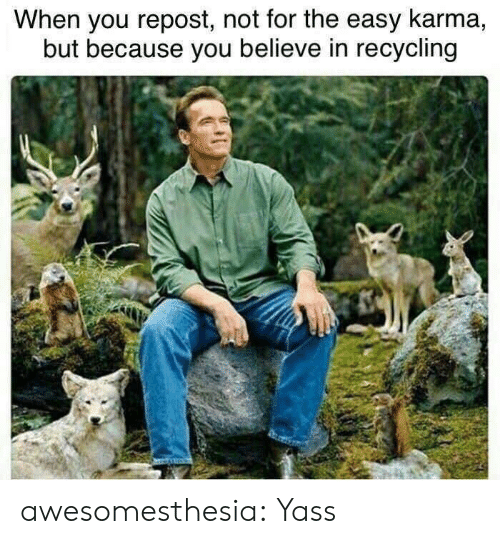 yass: When you repost, not for the easy karma,  but because you believe in recycling awesomesthesia:  Yass