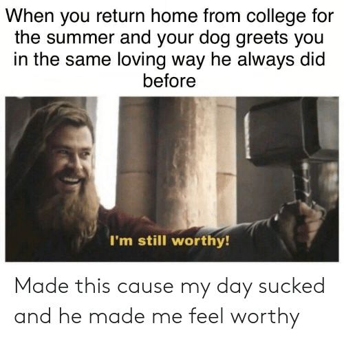 College For: When you return home from college for  the summer and your dog greets you  in the same loving way he always did  before  I'm still worthy Made this cause my day sucked and he made me feel worthy
