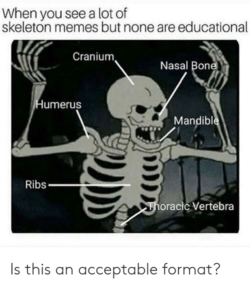 Skeleton Memes: When you see a lot of  skeleton memes but none are educational  Cranium  Nasal Bone  Humerus  Mandible  Ribs  Thoracic Vertebra Is this an acceptable format?
