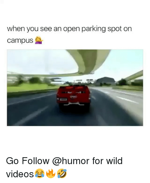 Videos, Wild, and Trendy: when you see an open parking spot on  campus Go Follow @humor for wild videos😂🔥🤣