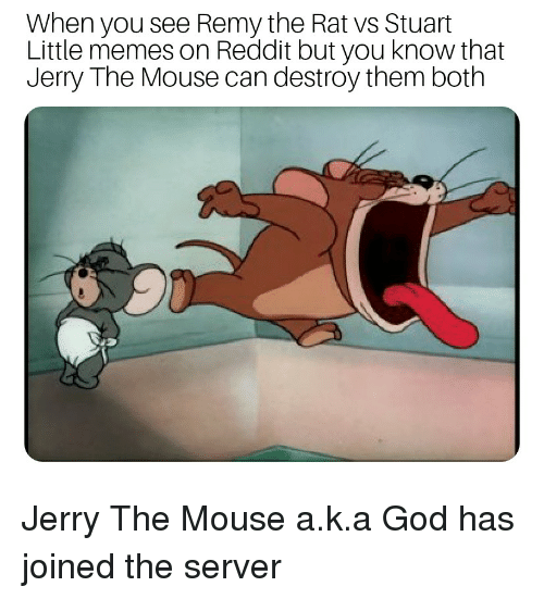 Jerry The Mouse: When you see Remy the Rat vs Stuart  Little memes on Reddit but you know that  Jerry The Mouse can destroy them both