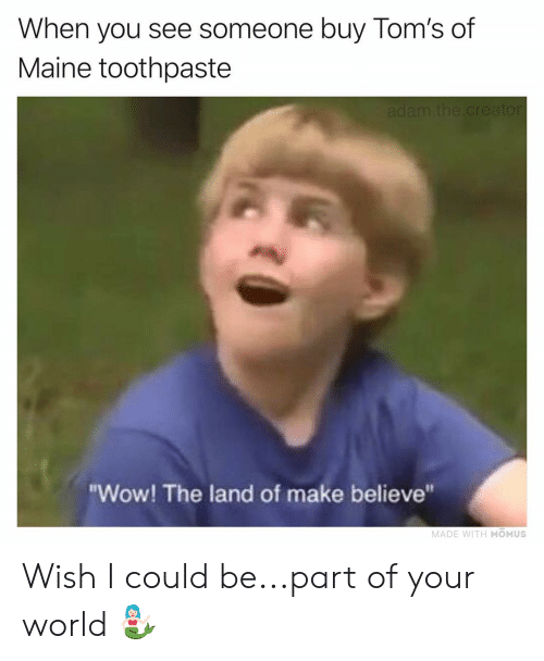 "Maine: When you see someone buy Tom's of  Maine toothpaste  ""Wow! The land of make believe""  MADE WITH MOMUS Wish I could be...part of your world 🧜🏻‍♀️"