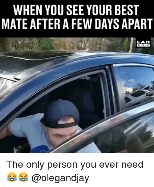 Memes, Best, and 🤖: WHEN YOU SEE YOUR BEST  MATE AFTER A FEW DAYS APART  LAD  BIB L E The only person you ever need 😂😂 @olegandjay
