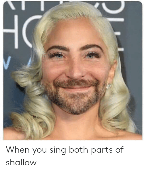 Celebrities, You, and When You: When you sing both parts of shallow