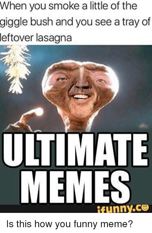 Ultimate Memes: When you smoke a little of the  giggle bush and you see a tray of  leftover lasagna  ULTIMATE  MEMES  ifunny.ce