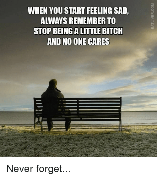 no-one-care: WHEN YOU START FEELING SAD,  ALWAYS REMEMBER TO  STOP BEINGALITTLE BITCH  AND NO ONE CARES Never forget...